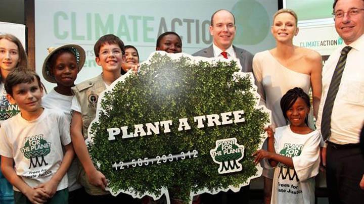 596_Plant_a_tree