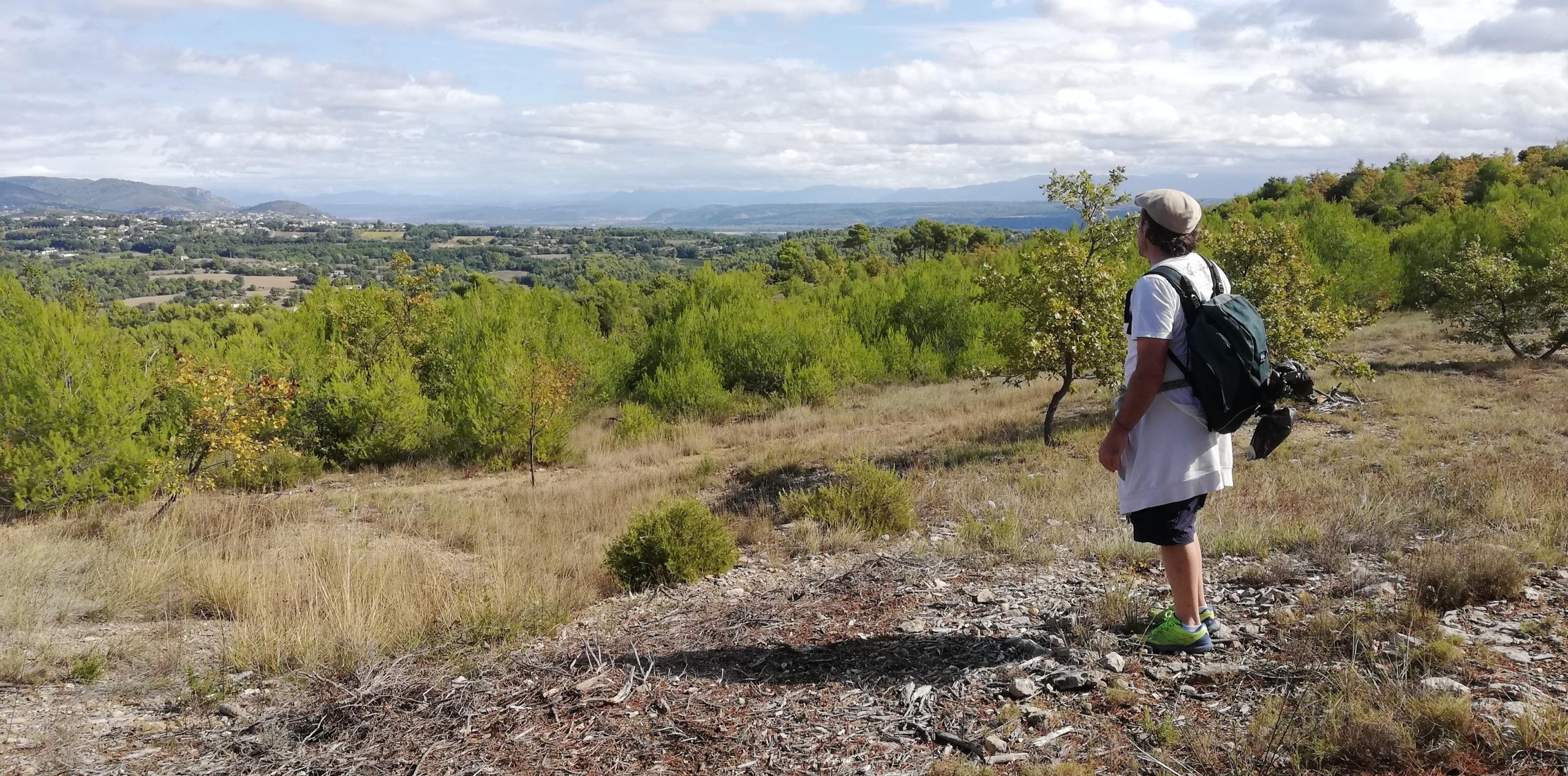 FR 5 landscape
