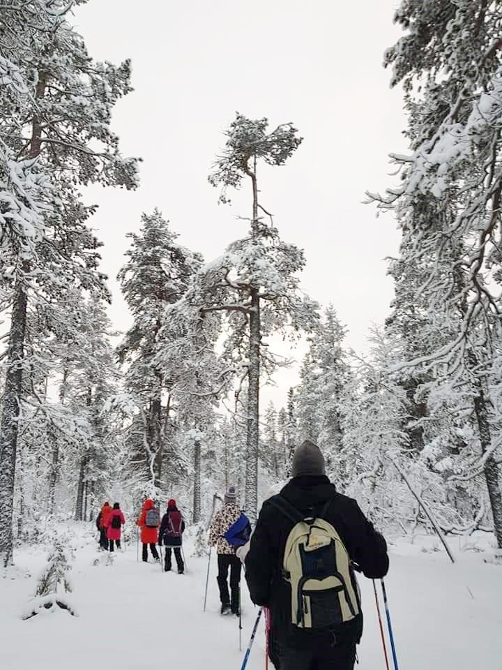 FinlandLapland2 (1)