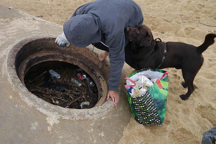 chien bunker déchets