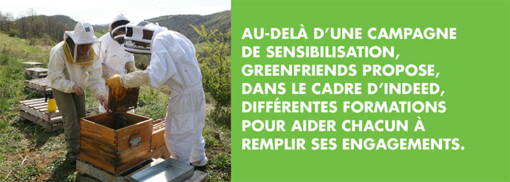 encadré Greenfriends 7 secondaire